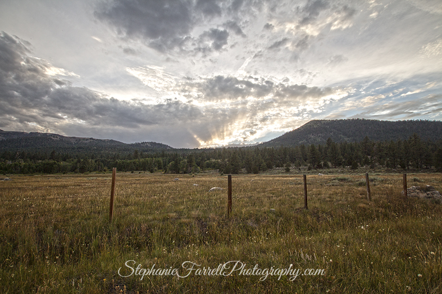 IMG_8046-hope-valley-sky-nature-photographer-stephaniefarrell-2015