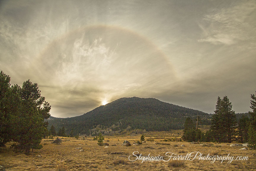 9929-hope-valley-rainbow-high-sierras-stephanie-farrell-2015
