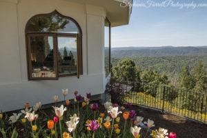 IMG_0592-crystal-hermitage-garden-anonda-nevada-city-2016