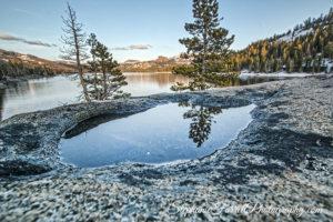 caples-lake-puddle-2016-stephanie-farrell-IMG_6366