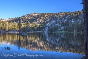 Woods-Lake-campground-highway-88-Sierras-California-scenic-2016-farrell-focus-IMG_7708