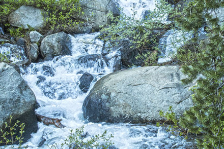 Woods-Lake-campground-highway-88-Sierras-California-scenic-waterfall-2016-farrell-focus-IMG_7708