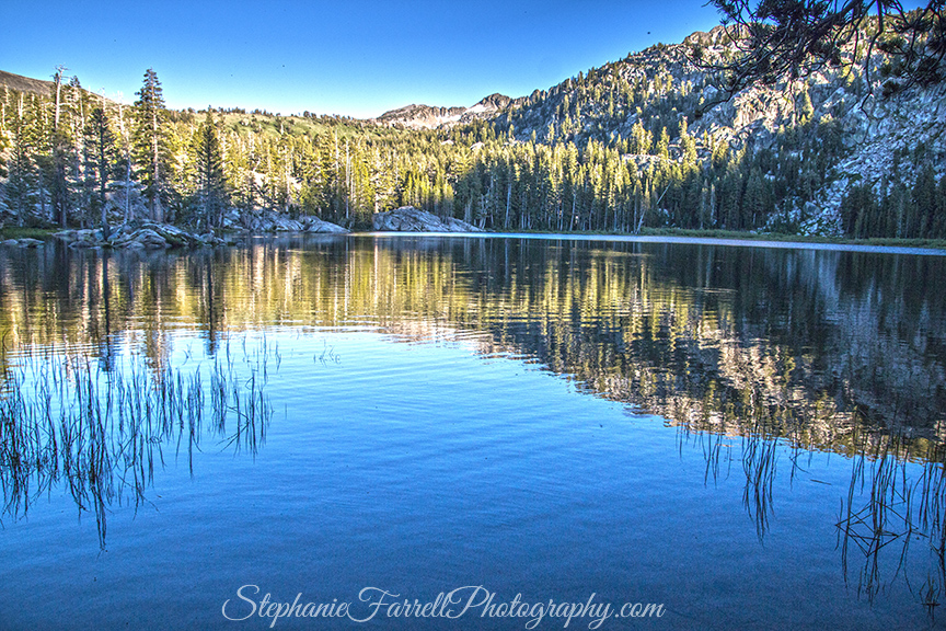 woods-lake-2016-amador-ca-IMG_7997