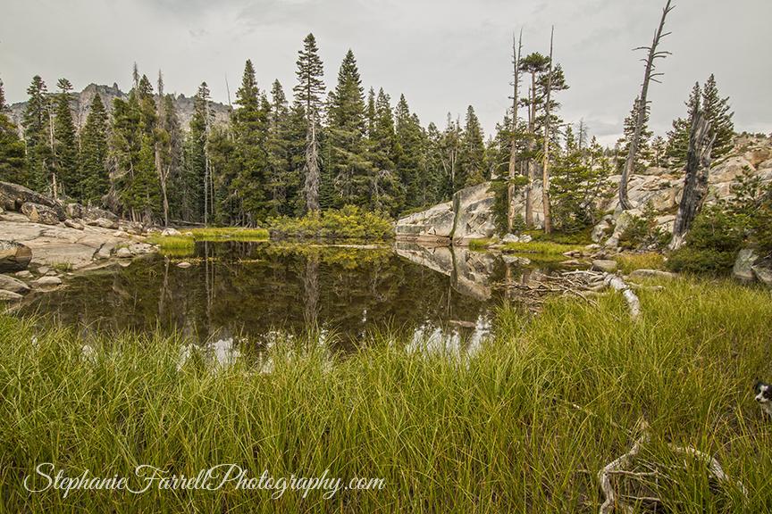 silver-lake-kirkwood-camping-2016-plasses-img_0146