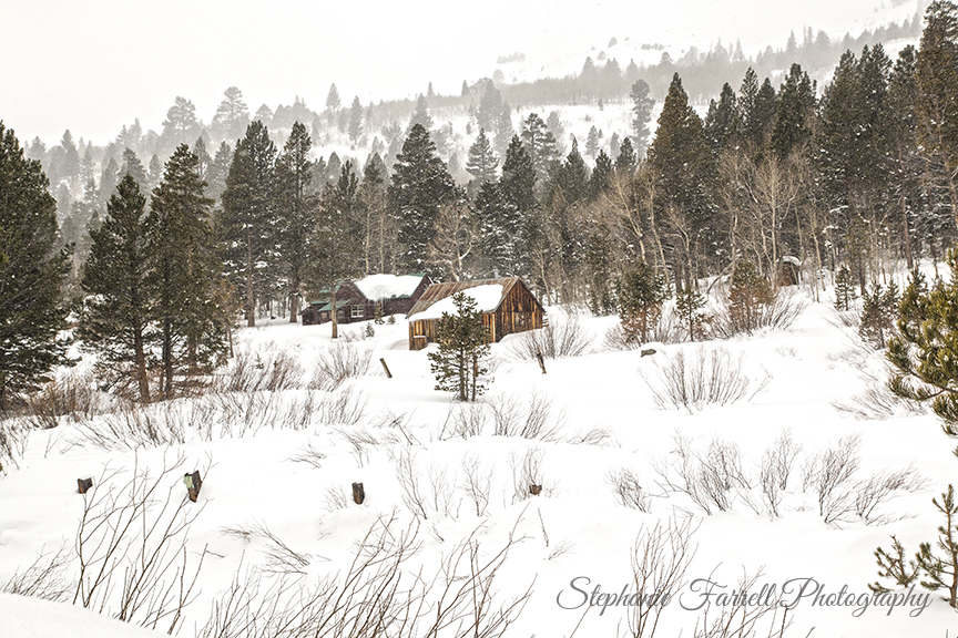 hope-valley-cabin-snow-stephanie-farrell-2015-IMG_5186