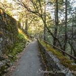 IMG_0292-burney-falls-california-2016-trail