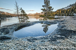 caples-lake-puddle-2016-stephanie-farrell-IMG_6366