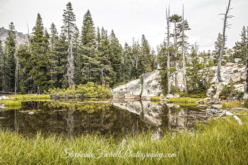 silver-lake-kirkwood-camping-2016-plasses-img_0130
